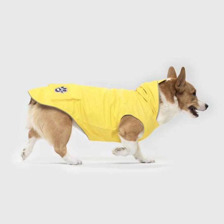 Best Waterproof Dog Walking Coat