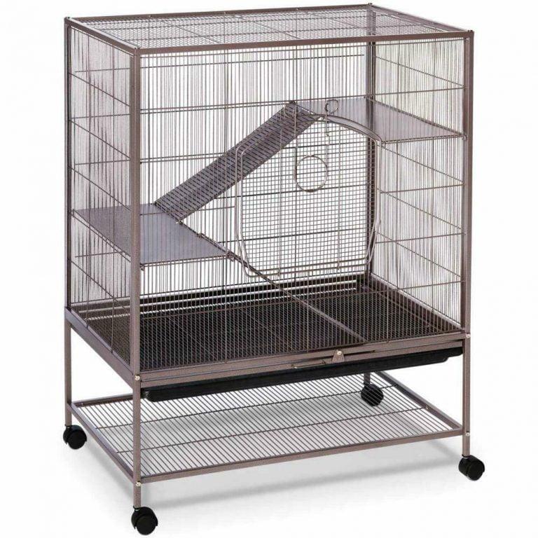 Cheap Chinchilla Cage