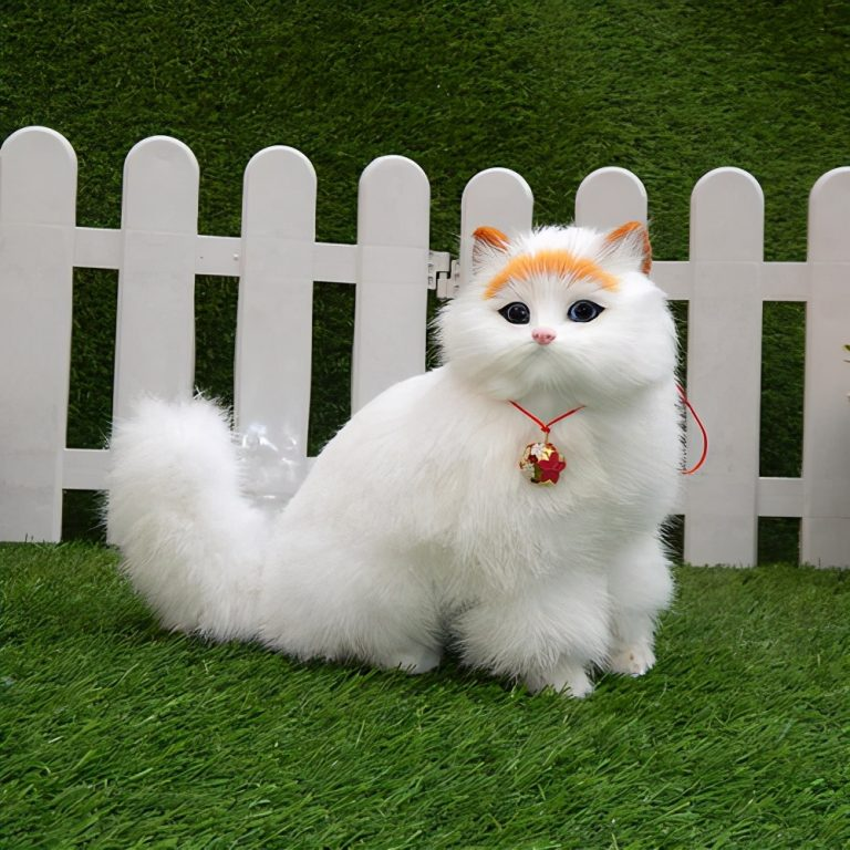 How Much Is A Persian Cat