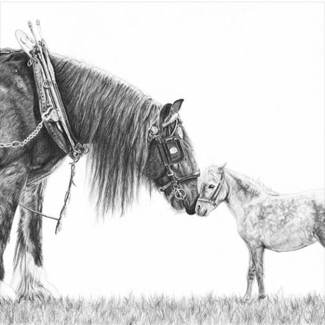 Loan A Horse