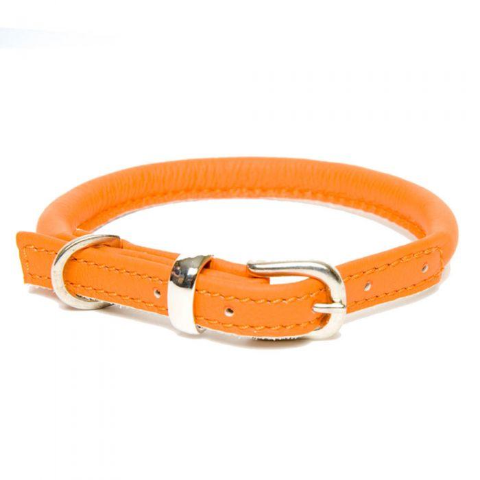 Orange Dogs