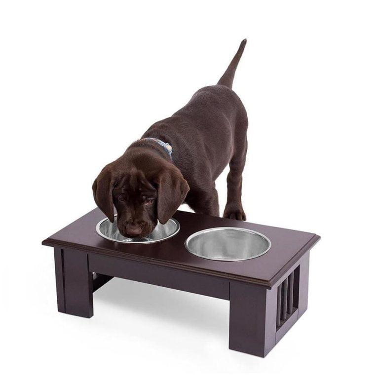 Pet Planet Dog Food