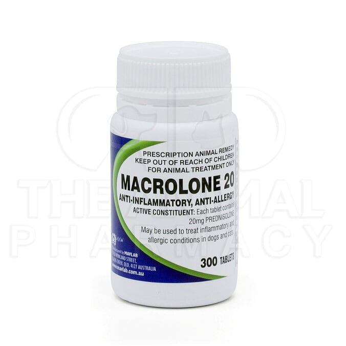 What Are Prednisolone Tablets