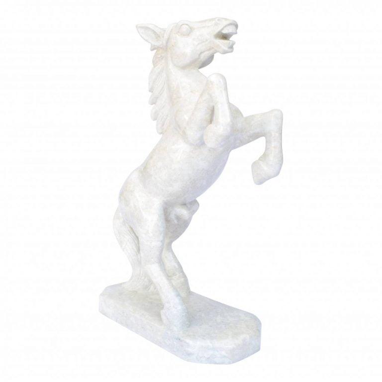 Names For White Horses