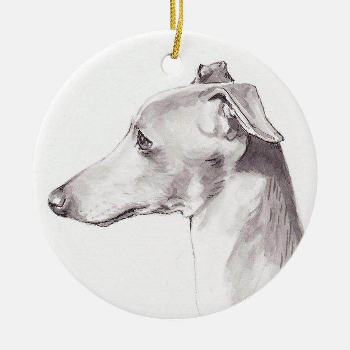 Mini Italian Greyhound