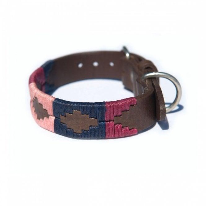 Brown Dog Collar