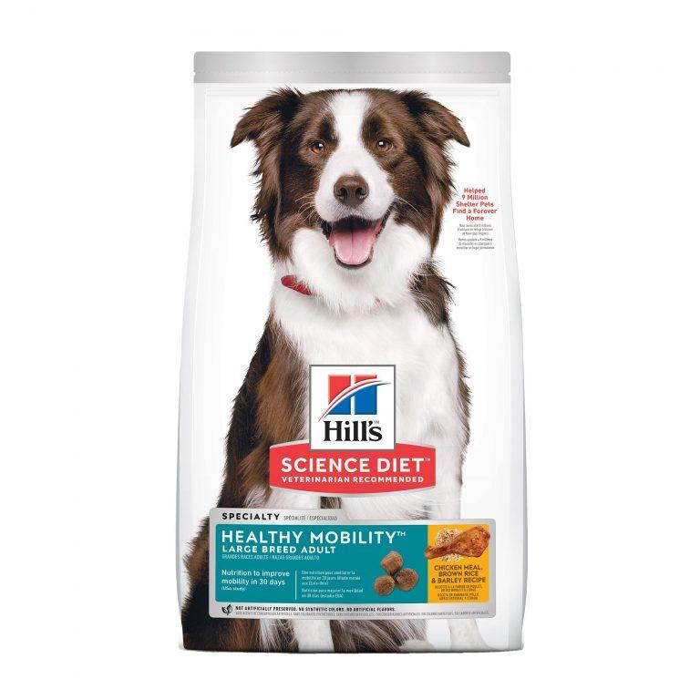 Dried Dog Food Brands